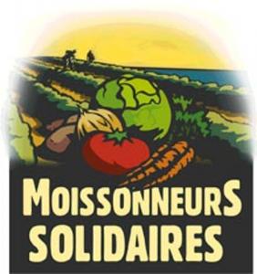 LogoMoissonneur